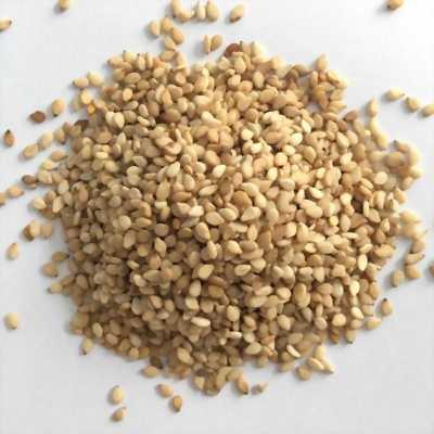 Sản xuất và cung cấp hạt mè (vừng) số lượng lớn tại Tp.HCM