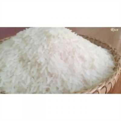 Gạo tám campuchia