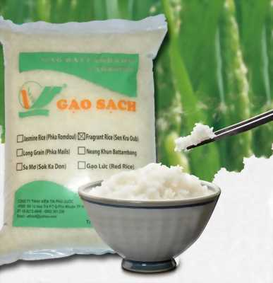 Gạo sạch Campuchia 1 năm/vụ nhập khẩu 100%