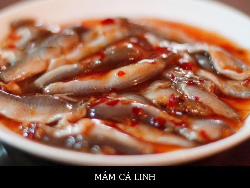 Mắm tép và mắm cá cơm gò công