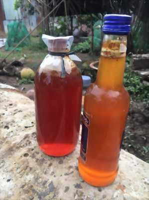 Bán mật ong rừng u minh nguyên chất