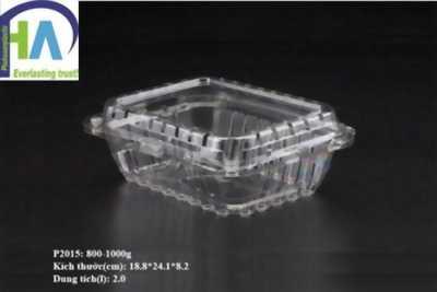 Sản xuất Hộp nhựa đựng dưa chuột P1000A Phú Hòa An
