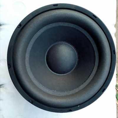 Một cái 20cm và 16cm loa Sub Bass