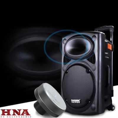 Loa hát karaoke di động Bluetooth