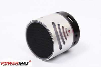 Loa mini bluetooth Powermax TS-02