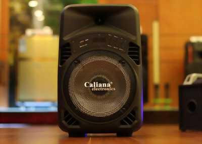 Loa kéo Caliana TX08B nhỏ gọn công suất 80W tại Thủ Đức