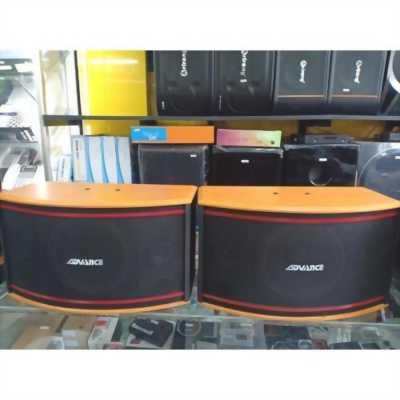 Loa Arirang Advance OSK-25H bass 25cm, 3 Way, 300W