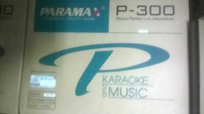 Loa Karaoke Paramax P300 - Chính Hãng