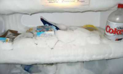 Cách nhanh chóng và dễ dàng sửa tủ lạnh bị đóng tuyết