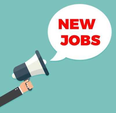 Cần tìm việc làm ạ
