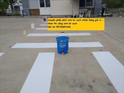Chuyên bán sơn kẻ vạch cadin và nhận thi công sơn kẻ vạch nhà xưởng tại Bình Dương