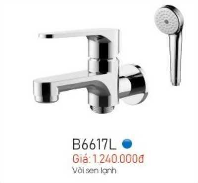 Vòi sen lạnh B6617L