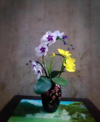 Hoa pha lê về trang trí nhà