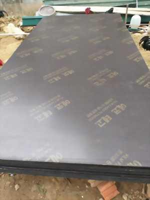 Cốp pha phủ phim chịu nước chống thấm thanh lý