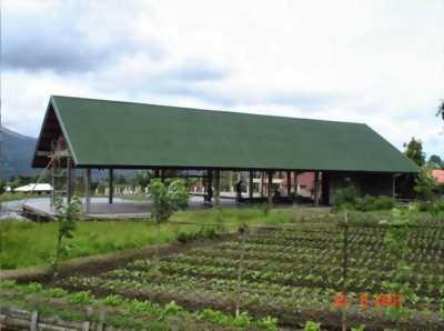 Mái lợp sinh thái chống nóng chống ồn ở Quãng Ninh