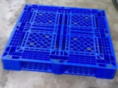 cung cấp các loại pallet nhựa cũ và mới