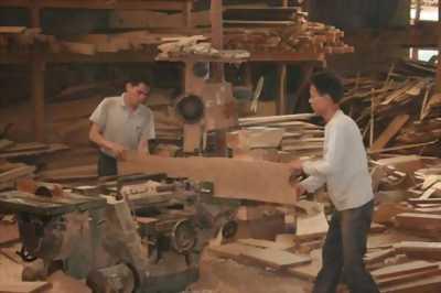 Sửa chữa đồ gỗ tại nhà hà nội