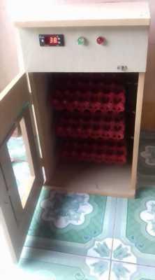 Bán máy ấp trứng mini tự động đảo trứng tại Đồng tháp