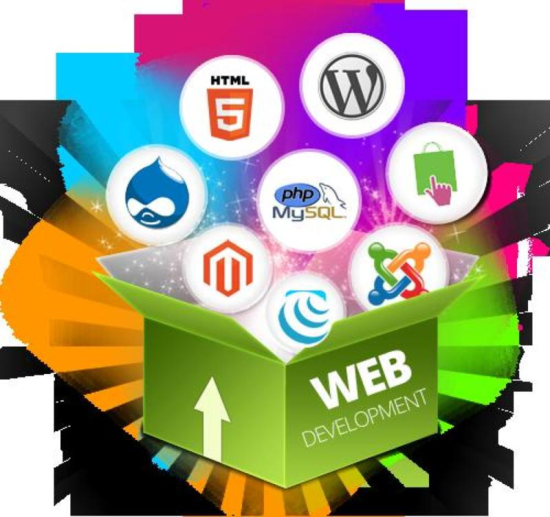 Cung cấp dịch vụ website và Facebook tại Gò Vấp