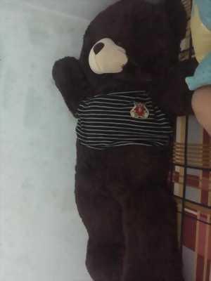 Bán gấu