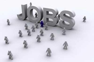 Muốn tìm 1 công việc làm ổn định đến tết