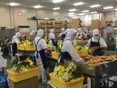 Cần tuyển nữ công nhân đóng gói hàng thực phẩm