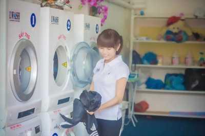 Tuyển sinh viên nữ trông quầy giặt là tại tân mai