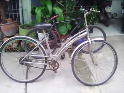 Xe đạp martin
