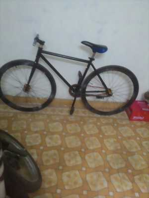 Xe fixed gear