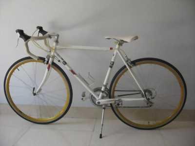 Xe đạp cuộc nhật bãi
