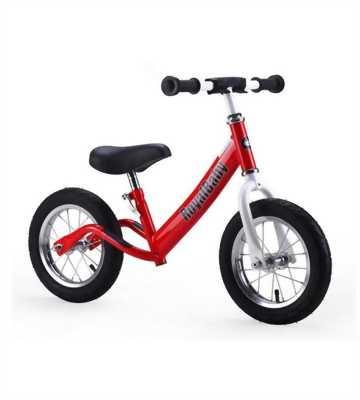 Xe đạp thể thao gấp