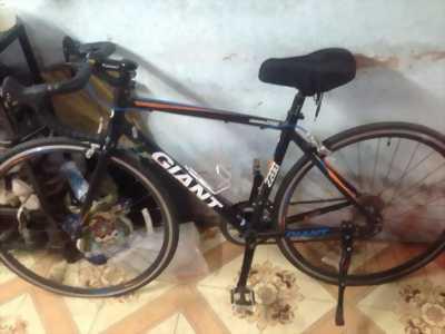 Xe đạp thể thao GIGANT