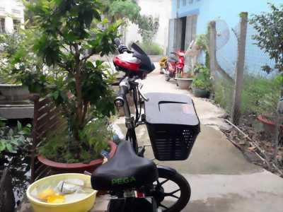 Xe đạp điện pega