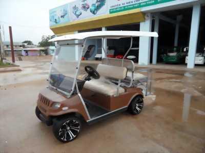 Xe điện, xe ô tô điện, xe điện san gold, xe điện du lich, xe điện cứu thương
