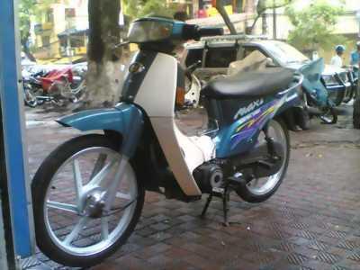 Kawasaki Max