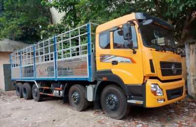 Xe tải Trường Giang 5 Chân, trả góp đưa trước 300 triệu